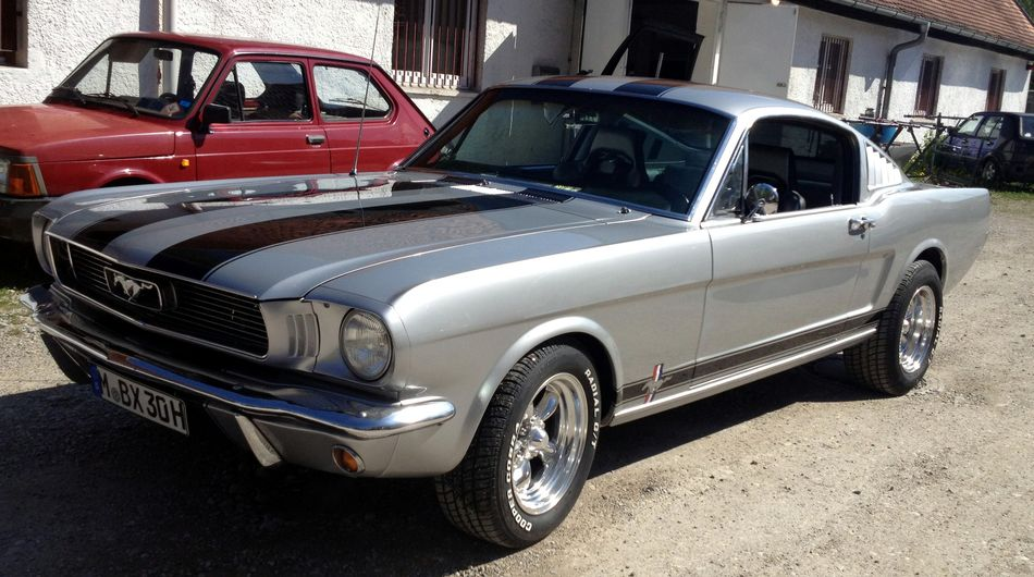 Mustang Picture Gallery 5 2